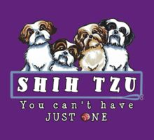 Shih Tzu: You Can't Have Just One by offleashart