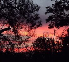 Sunset behind desolate trees 2 by Joy-by-Jennie