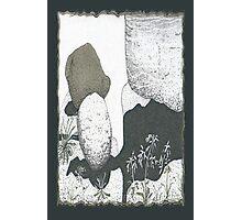 A Boulder Composition * Photographic Print