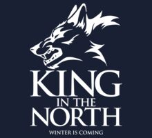 King of the North by ShirThrones