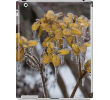 Ice Storm 2013 - My Garden in the Morning  iPad Case/Skin