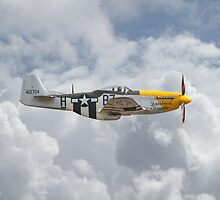 P51 Mustang Gallery - No5 by warbirds