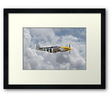 P51 Mustang Gallery - No5 Framed Print