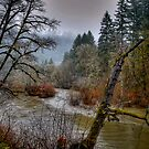 That Old Lazy River by Charles & Patricia   Harkins ~ Picture Oregon