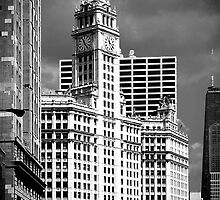 Wrigley Building Chicago Illinois by Christine Till  @    CT-Graphics