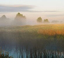Morning Colours by James  Key