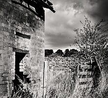 Broken Dream by Christine  Wilson Photography