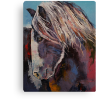 Highland Pony Canvas Print