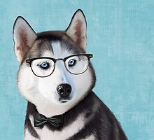Mr Siberian Husky by Sparafuori