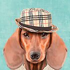 Mr Dachshund by Sparafuori