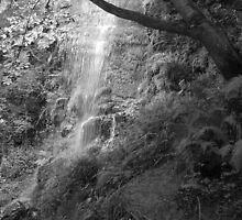 Goathland Mallyan Spout Waterfall B&W by HummingBird-Pax