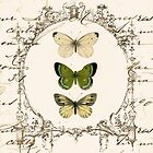 Vintage Butterflies in Frame by claryce84