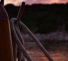 purple sunset by gzmguvenc89
