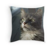 Moment of reflection Throw Pillow