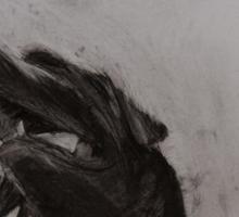 Black and white drawing, Labrador Retriever Sticker