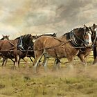 In For The Long Haul by Trudi's Images