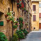 Pienza Street by Inge Johnsson