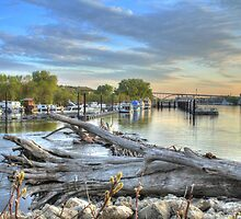 Mississippi Harbor 2 by Jimmy Ostgard