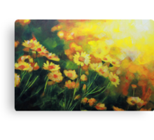 Daisies in the Sun landscape Flower painting by Samuel Durkin Canvas Print