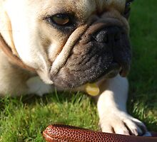 French bulldog with a ball by VicHL
