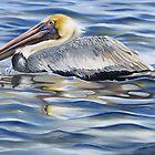 Cedar Point Pelican by Phyllis Beiser