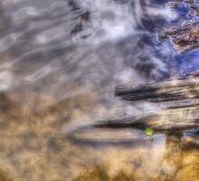 Water Pattern II by Nigel Bangert
