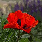Red Orange Oriental Poppy Pillow - Artistically Enhanced by Subwaysign