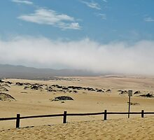Fog Over Sand Dunes by Martha Sherman