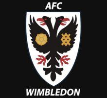 AFC Wimbledon by aliendist