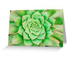 Green Flower Greeting Card