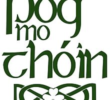 Póg mo thóin - St Patricks Day Tee by Sally McLean