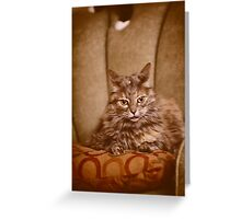 He's right behind me, isn't he? Greeting Card
