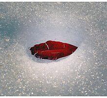 Icy Leaf Lips by BrasdOrLife