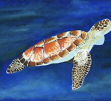 Turtle by Little-Creator