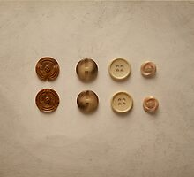 Eight Pairs of Matching Vintage Buttons by Kim-maree Clark
