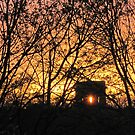 Norton Water Tower 11.04.14 by Barbara Smith