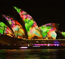 Colourful Vivid 2014 by Michael Matthews