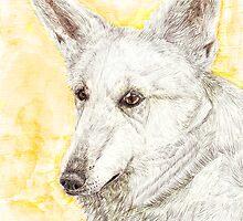 Graceful White by KentLaiton