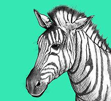 Zebra by Megan Hutto