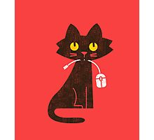 Hungry Hungry Cat Photographic Print