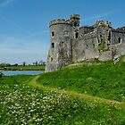Carew Castle by Paula J James