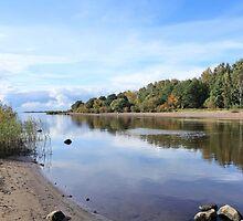 Scenic autumn  landscape  by mrivserg
