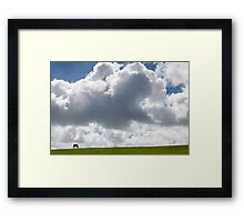 Solitary Horse in Field Framed Print