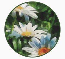Gardens - Three White Daisies Kids Clothes