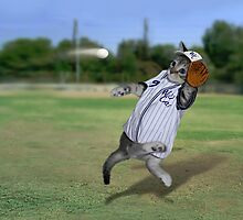 Baseball Catcher Kitten by Gravityx9