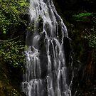 Mountain Waterfall by Tori Snow