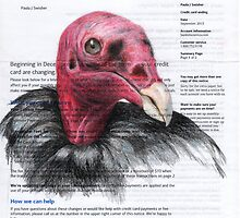 Bank of America Vulture by paulapaints