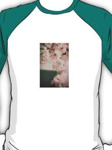 So Sweet The Sense Fades T-Shirt