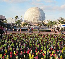 Epcot Center, I Can See the Ball! by elderblues