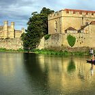 Punting on the moat  by larry flewers